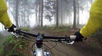Ciclismo, Manillar, Bosques, Bicicleta