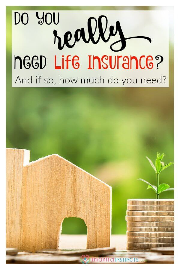 Do You Really Need Life Insurance And If So How Much Do You Need