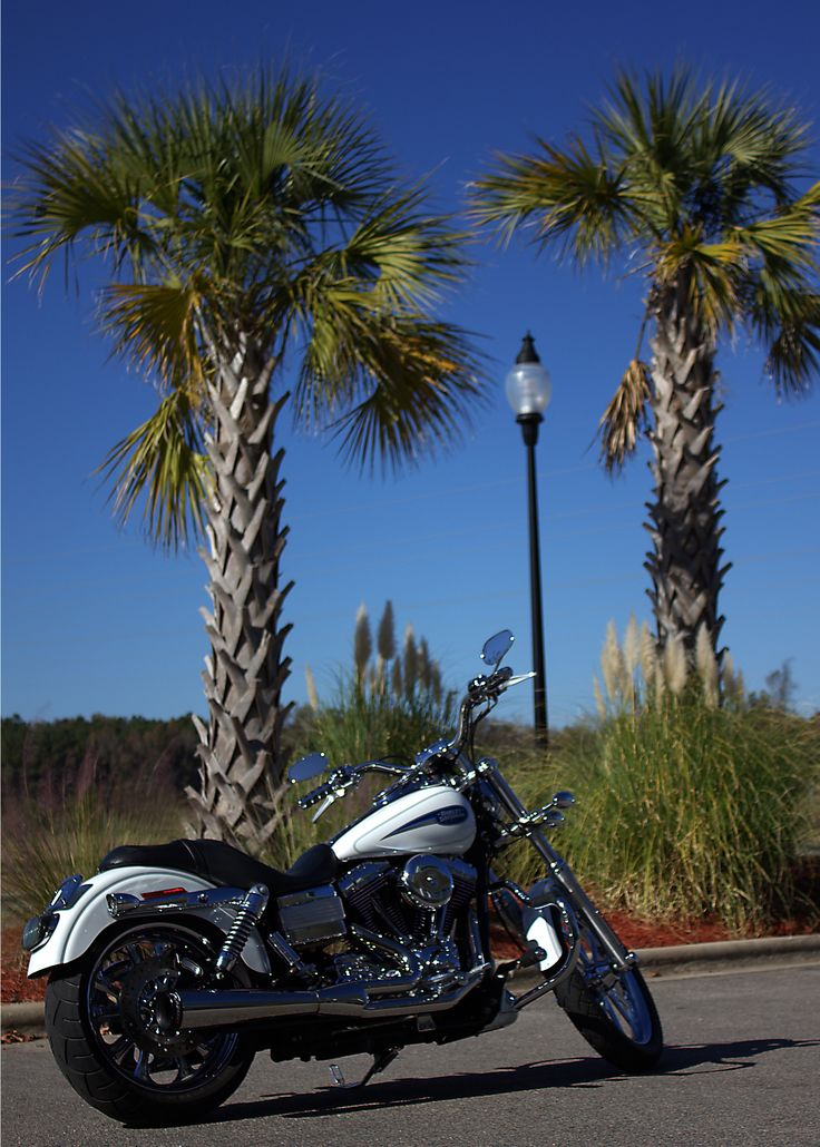 40 best pre loved bikes images on pinterest bike harley this 2006 harley davidson fxdli has 23878 miles and is in glacier white she fandeluxe Choice Image