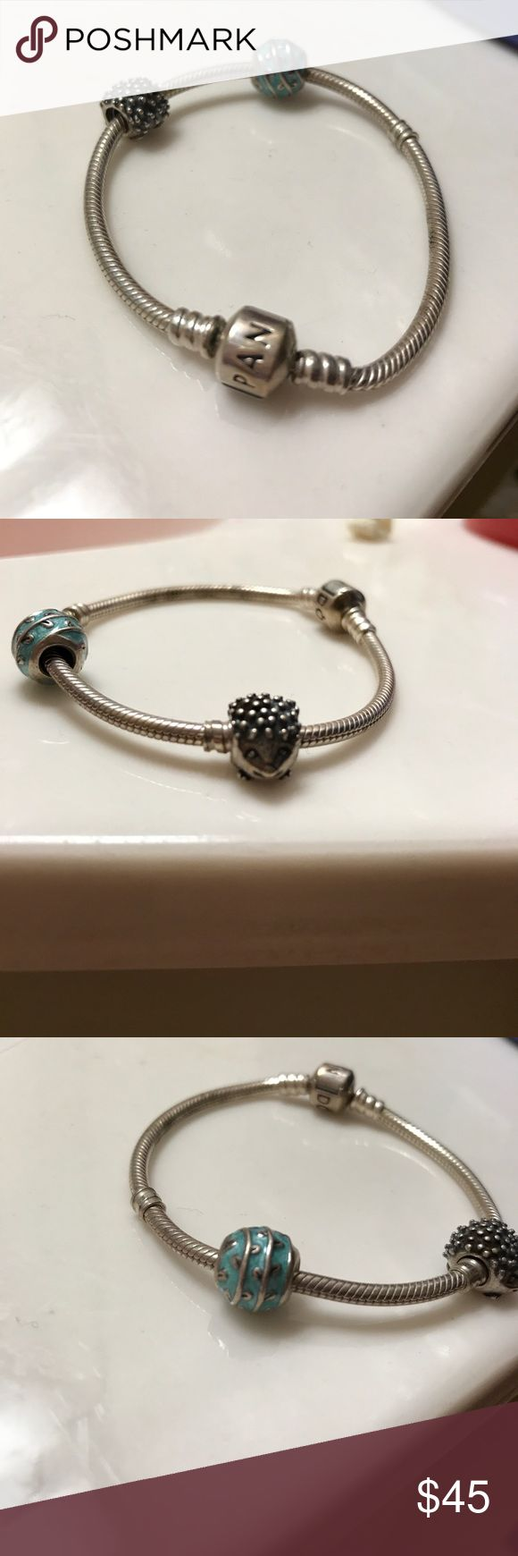 Pandora Bracelet with hedgehog & a leaf charm! One charm is a hedgehog and the other charm is blue with a leaf design through it. Small band. (The pictures of the charm alone are taken from the website. My charm is a lighter shade of blue but same design). Price negotiable and bundles welcome Pandora Jewelry Bracelets