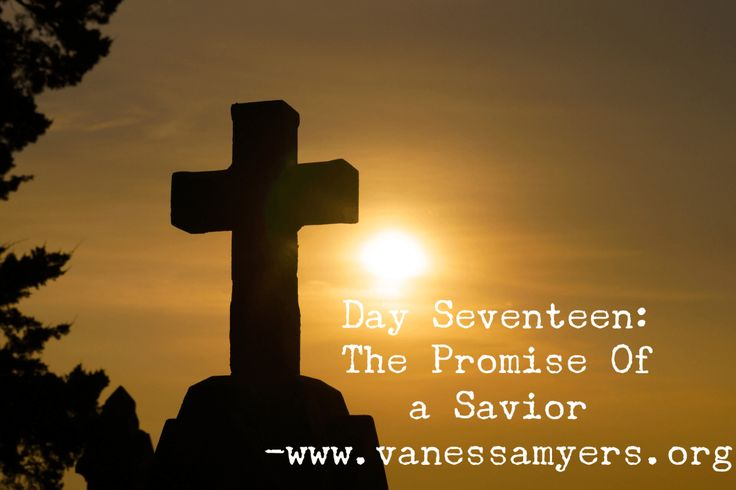 Day Seventeen:  The Promise of a Savior