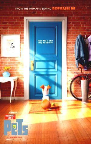 Play This Fast Streaming The Secret Life of Pets Online Cinemas Filme UltraHD 4K…