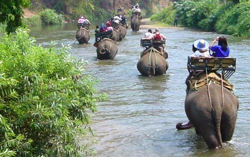 Elephant Trekking, Thailand.I will.