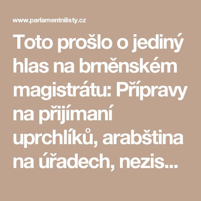 Toto prošlo o jediný hlas na brněnském magistrátu: Přípravy na přijímaní uprchlíků, arabština na úřadech, neziskovky v akci | ParlamentniListy.cz – politika ze všech stran