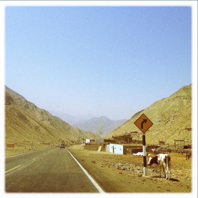 Camino a Lunahuana.