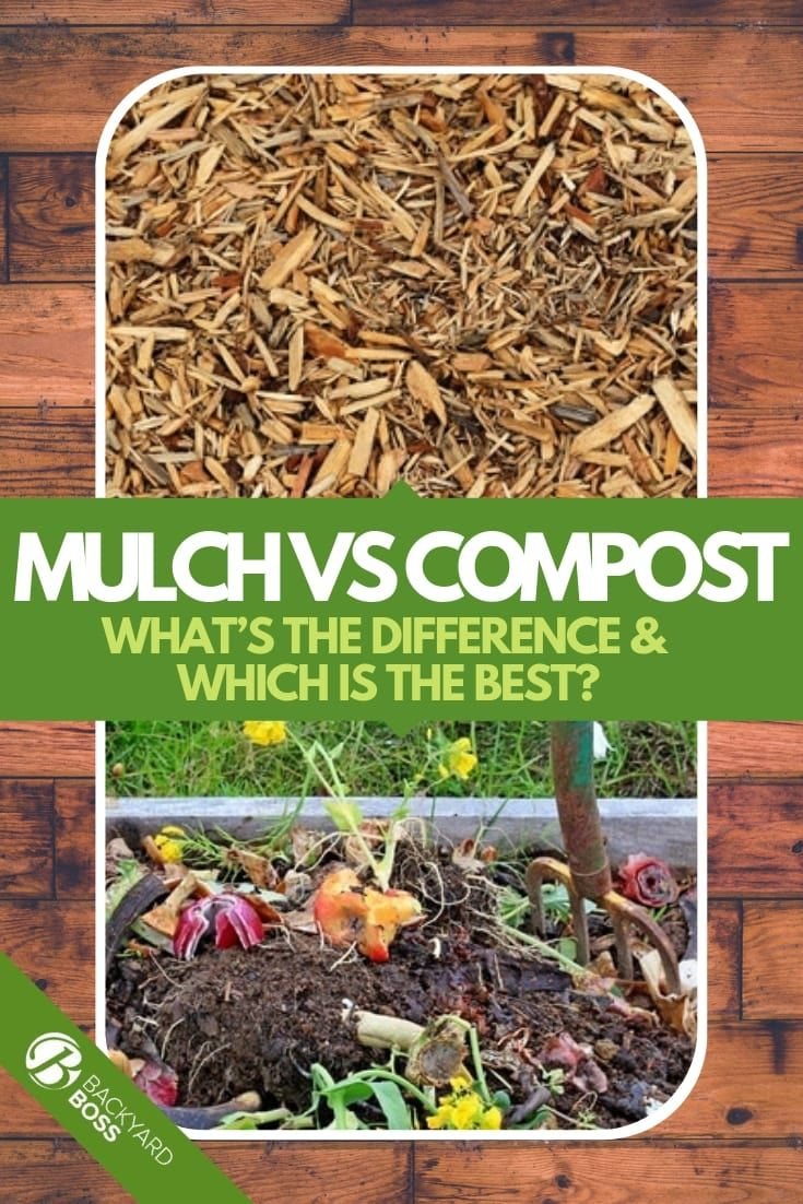 Mulch Vs Compost What S The Difference Which Is The Best Mulch Compost Vegetable Garden Tips