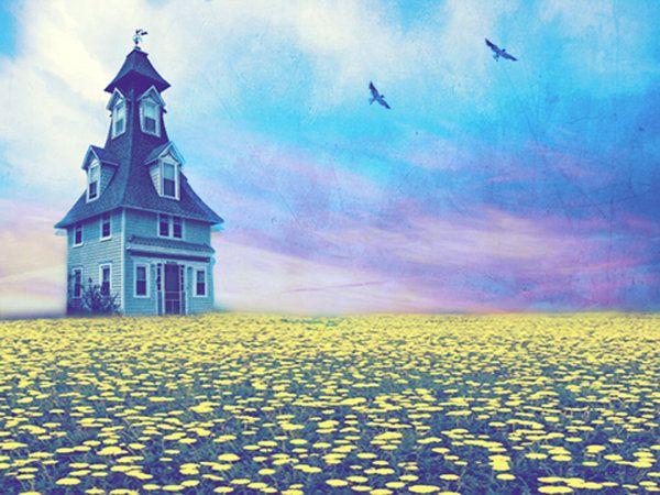 field: Tiny Houses, Field Home Sweet Home, Fields