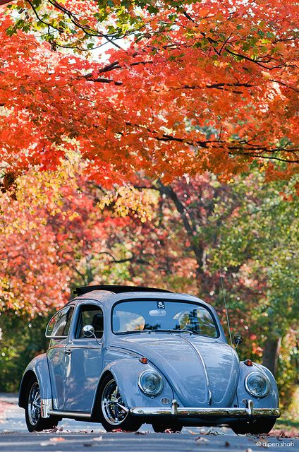 Fusca azul - Corujão VW