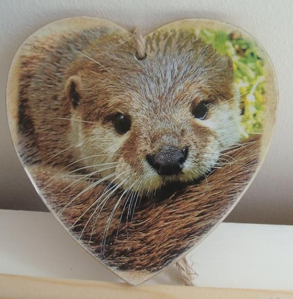 Monkey Animal Handmade Wooden Heart Plaque Decoration Gift