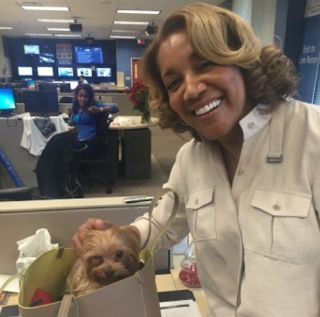 Amanda Davis - Net Worth Age Massive Spontaneous Stroke  Amanda Davis passed away on Wednesday December 27 2017 after suffering a massive spontaneous stroke. Davis was born in 1955 and was 62-years-old. On Tuesday December 26 the Atlanta news anchor was at Hartsfield Jackson International Airport waiting to board a flight when she suffered the stroke.  Amanda Davis Net Worth: $2 Million  Amanda Davis $2 million net worth was earned through her career as a news anchor. She graduated from…