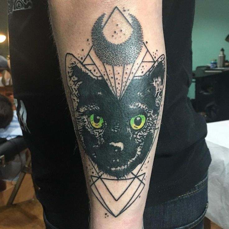 Black Cat by Josh Suchoza Black Labyrinth Tattoo Syndicate Easthampton MA (done while he was visiting White Willow Collective Pgh PA)