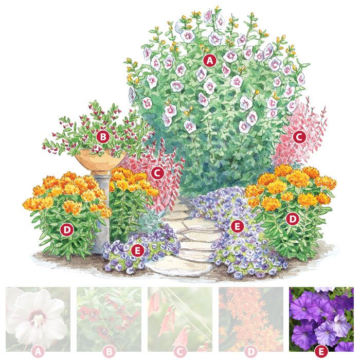 105 best images about free garden plans on pinterest for Butterfly garden designs free