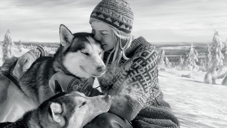 Beautiful short video about the Finnish wilderness   Call of the Wild - Tinja and Her Dogs - FINLAND