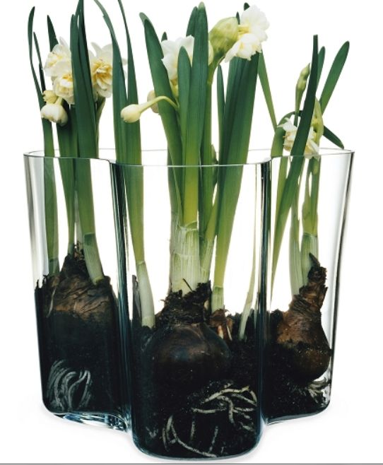 This amazing vase can be used in many ways!!!!