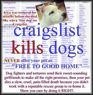 PLEASE DO NOT advertise dogs on Craigslist..... Not just dogs either! It's dangerous and can be lethal. There are much safer ways to rehome your furkid.
