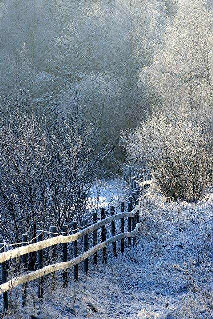 Frozen Landscape II by johnivara, via Flickr