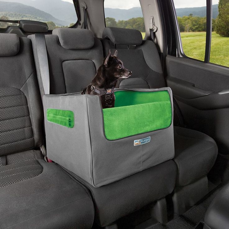 Small Dog Car Seat | Skybox Rear Dog Booster Seat