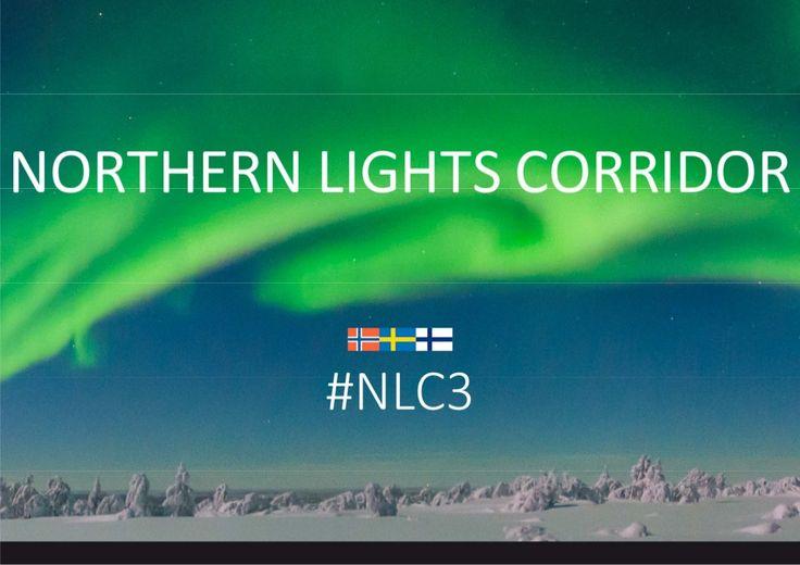 #NLC3 CEO Reija Viinanen, Tunturi-Lapin Kehitys ry 26.11.2014 Olos by Katri Rantakokko via slideshare
