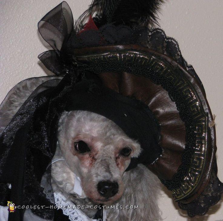 97 best Pet Halloween Costumes images on Pinterest   Pet ...