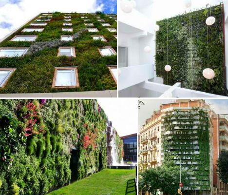 131 best images about green living on pinterest solar for Vertical green wall