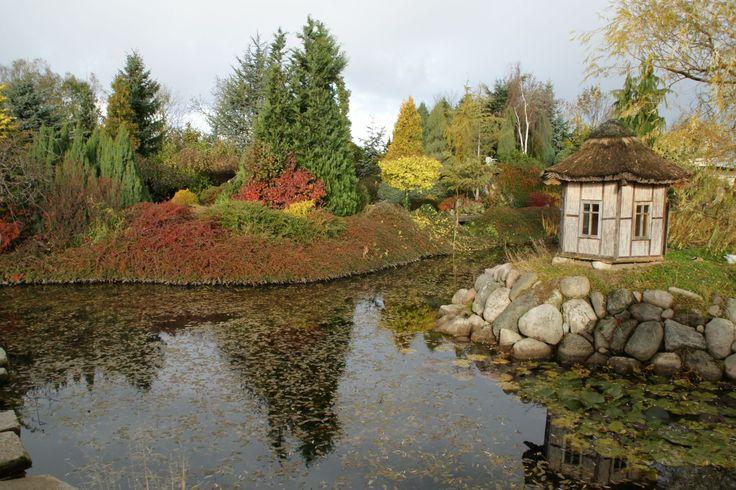 jesienne kolory, staw z domkiem dla kaczek na wyspie w ogrodach Tematycznych Hortulus w Dobrzycy