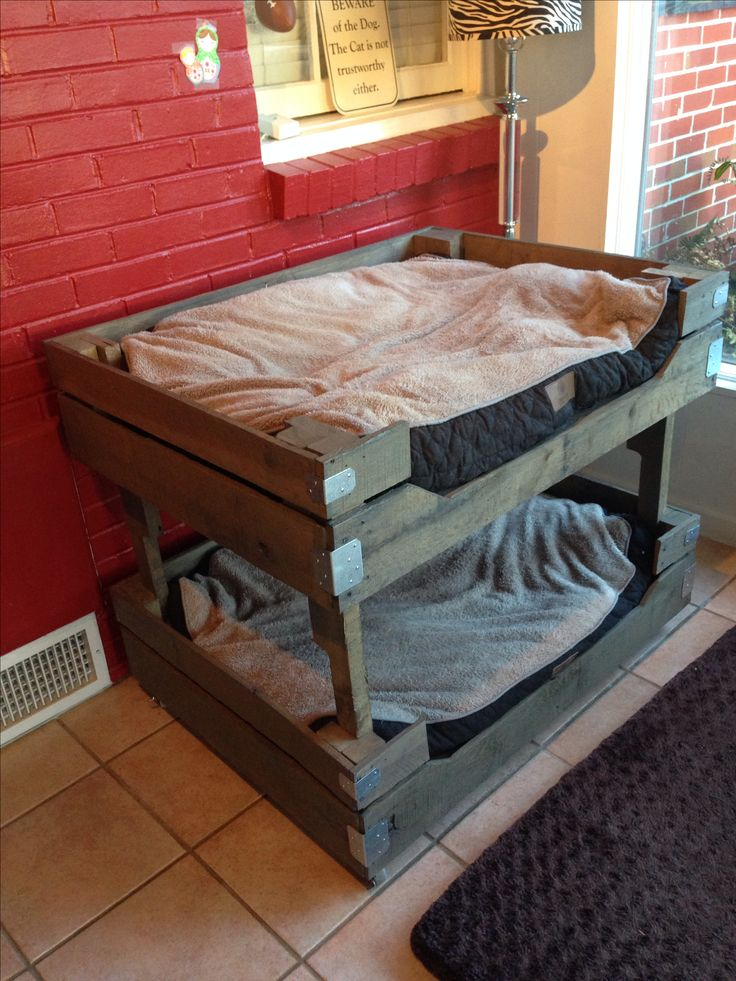 pallet dog bunk beds pets pinterest dogs beds and. Black Bedroom Furniture Sets. Home Design Ideas