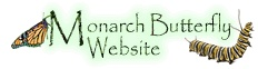 the monarch butterfly website
