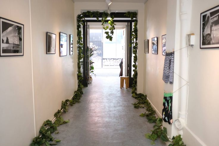 Location plante: Végétalisation showroom - les others