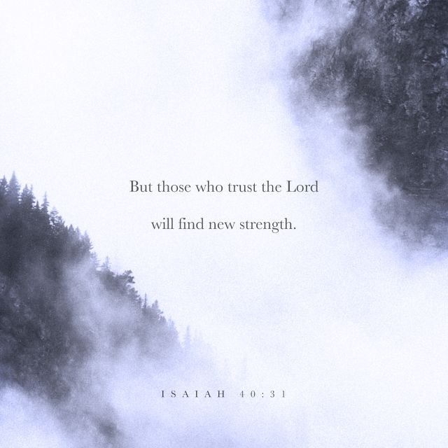 """""""But those who trust in the LORD will find new strength. They will soar high on wings like eagles. They will run and not grow weary. They will walk and not faint."""" Isaiah 40:31 NLT"""