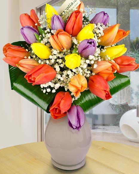 Buchet cu lalele colorate și floarea miresei. Colorful tulip bouquet.