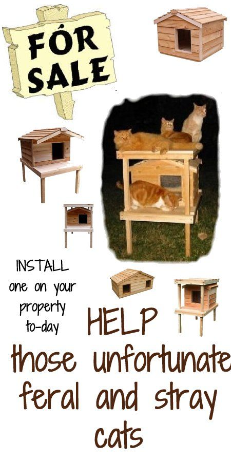 Cat Outside House Sale - If you are not inclined to go to an outside cat houses sale and purchase one cheap, but you are a handy man type of person and could build things, then building an outdoor cat house and placing it on your property is a definite way of helping out with the feral cat problem in your community. - #outsidecathouse #outdoorcathouse #catoutsidehouse http://www.catbedandtoy.com/outdoorcathouse