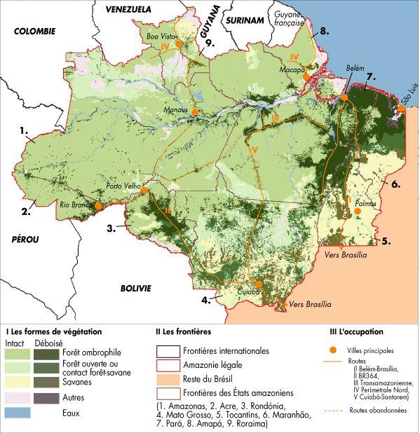 Jusqu'au bout de la forêt? Causes et mécanismes de la déforestation en Amazonie brésilienne