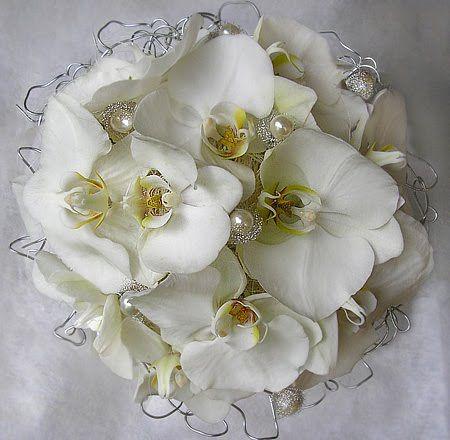 orchidea képek - Google keresés