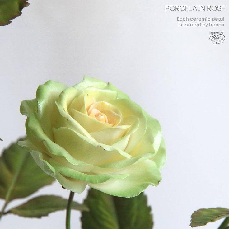 Handmade porcelain rose. Fragment. Flowers are made hight firing 🔥 porcelain, glazed and onglaze…»
