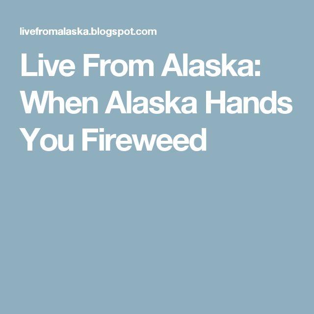 Live From Alaska: When Alaska Hands You Fireweed