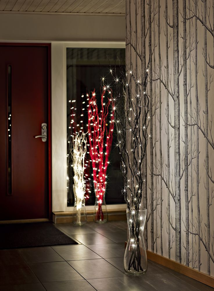 Birch forest wallpaper with twig lights foyer home for Twig decorations home