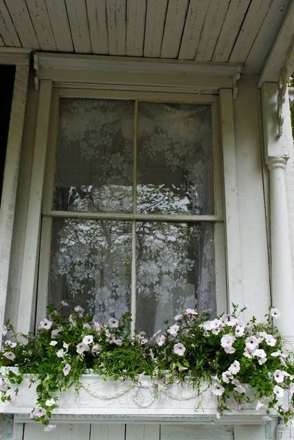 next year...white flowers in the window boxes