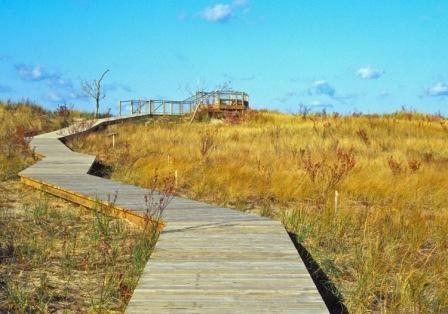 Rosy Mound Natural Area; Grand Haven, MI