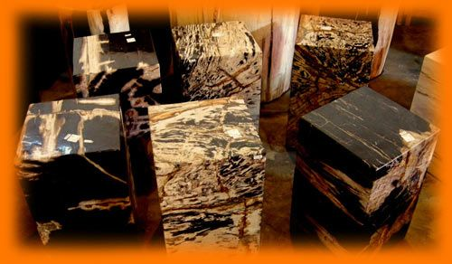 IndoGemstone Petrified Wood End Table