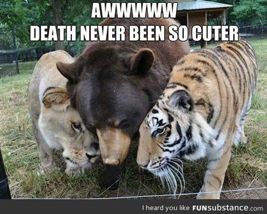 Deathly hug