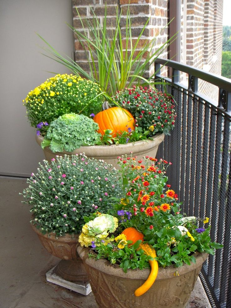 25 best ideas about fall planters on pinterest front for Garden arrangement ideas