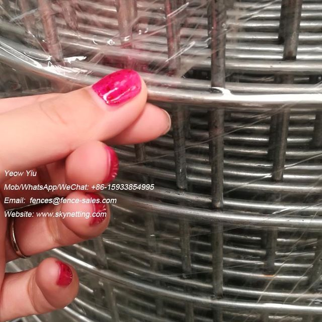Source Cheap Price 10x10 10 Gauge Electro Hot Dipped Galvanized Welded Wire Mesh On M Alibaba Com Wire Mesh 10 Things Steel Mesh