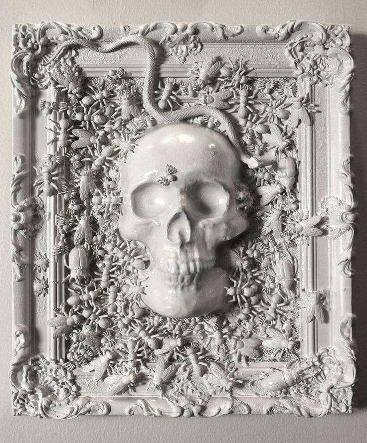 Stylish White Skull Frame. Ornate Frame, Skull, Plastic