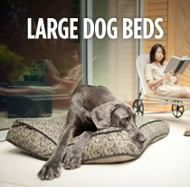 Going to need one (or maybe two) of these for my Weim (the dog in the picture) <3...or a cute big dog house