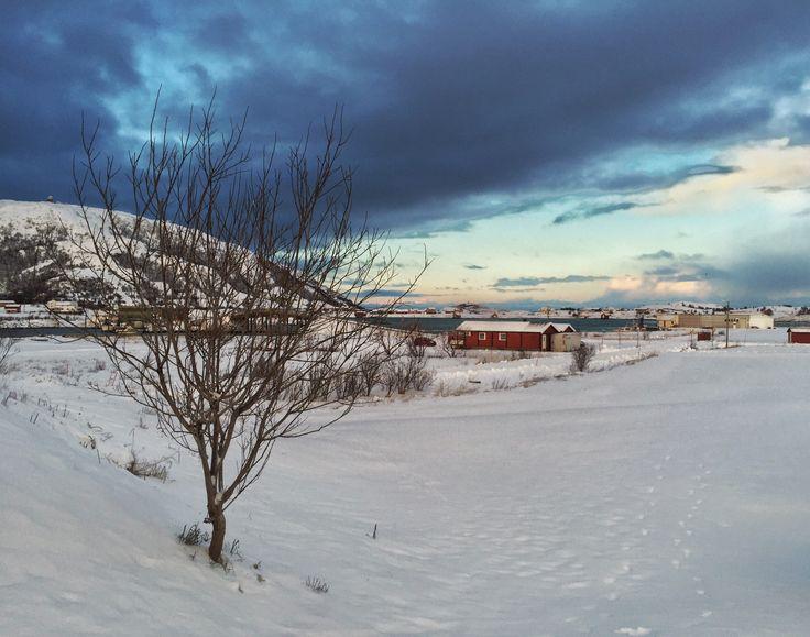 Winter, Sommarøy, Tromsø, Norway
