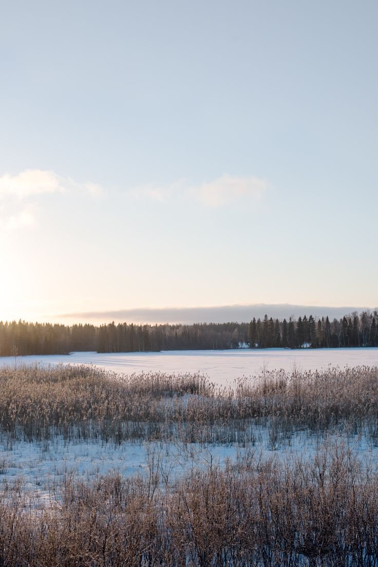 My country - Finland. Lots of forest & open flat land.