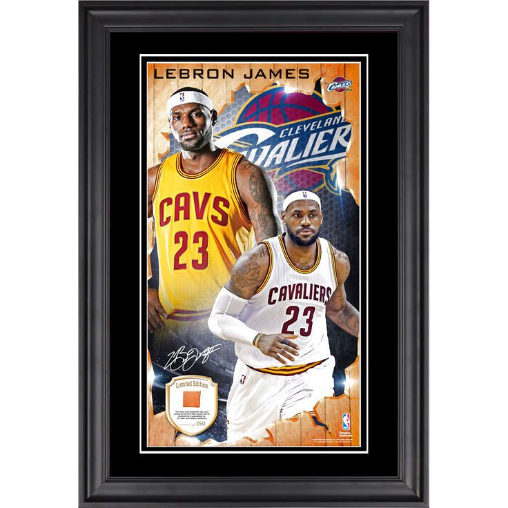 LeBron James Cleveland Cavaliers Fanatics Authentic Framed 10'' x 18'' Vertical Photo Collage with Team Used Basketball- Limited Edition of 250 - $99.99