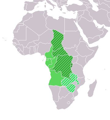 Location Central Middle Africa - Central Africa -  origins of africans imported to america