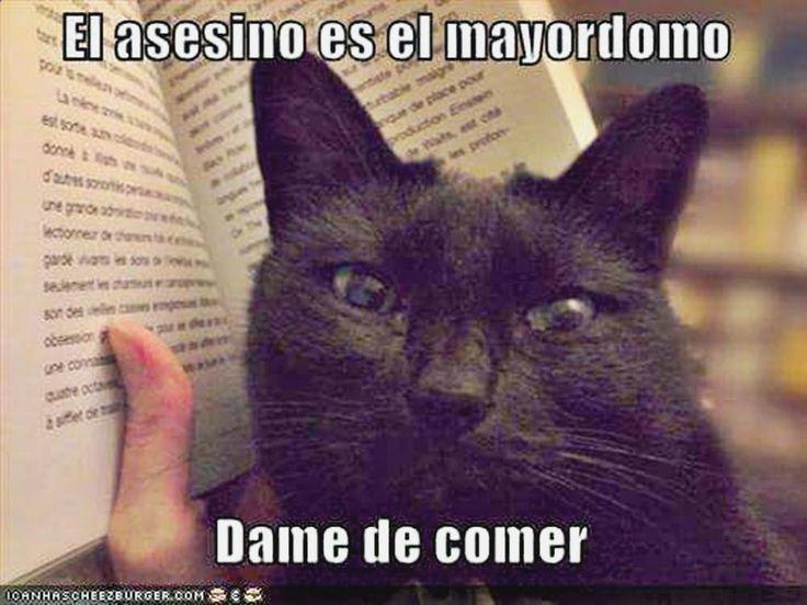 ^_^ Descubre lo mejor en memes risa mexico, imagenes de humor para adultos en español, meme generator, formula gif animados y chiste yo soy de rancho ➦ http://www.diverint.com/gifs-animados-lindos-herida-curandose/