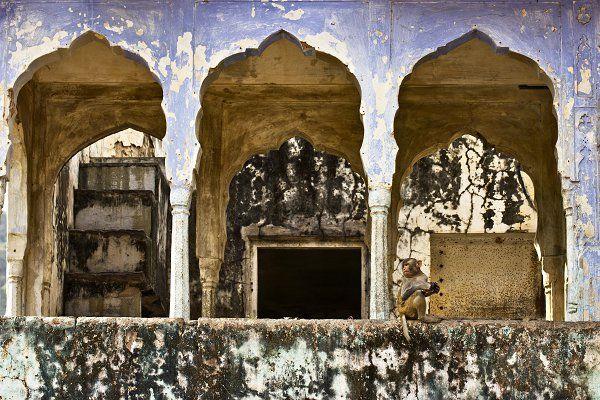 ph. talitha Puri Negri - pigmented fine-art giclée museum certified